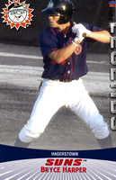 2011 Hagerstown Suns Legends Card Set